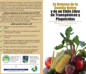 Captura de un folleto de la Red de Acción en Plaguicidas y sus Alternativas para América Latina auspiciado por el Gobierno de Asturias /