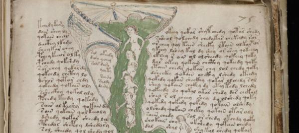 Detalle de una página del manuscrito Voynich.