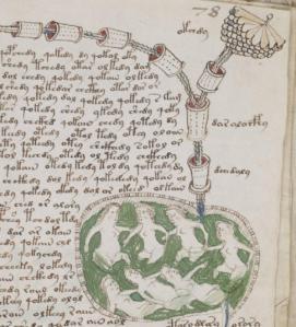 Detalle de una de las páginas de la sección 'biológica'.